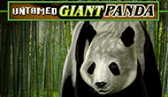 Untamed Giant Panda Microgaming